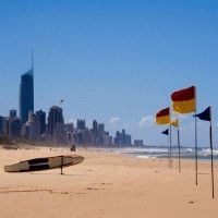 Contiki : City to Surf - 7 Days