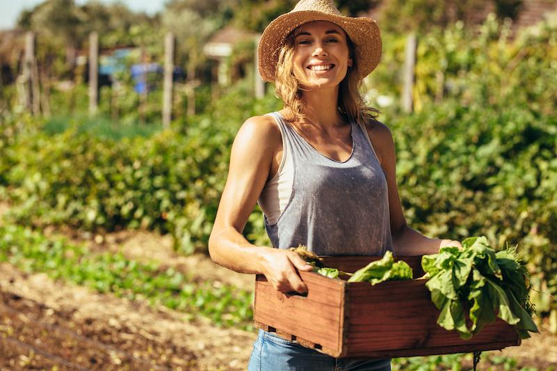 organic-farm-jobs