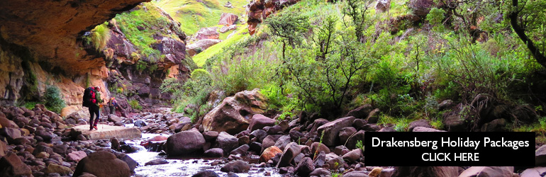 A view of a hiking trail in the Drakensberg.