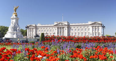 Buckingham Palace in Bloom