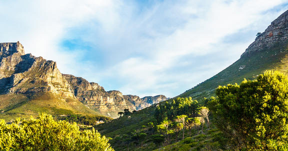 What to see, eat and experience in Cape Town
