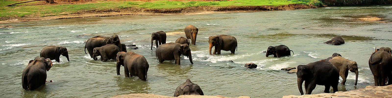 Budget-friendly holiday in Sri Lanka