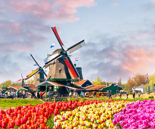 amsterdam-day-tours