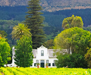 Top Things To Do In Cape Town