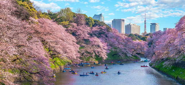 A famous view of Tokyo, which can be visited when you book a hotel or other accommodation with Flight Centre.